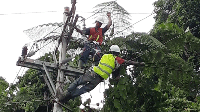 Proses pemulihan jaringan listrik pasca banjir bandang Sentani