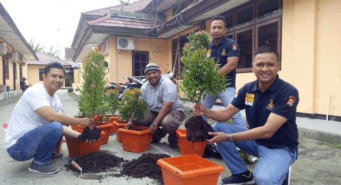 Proses persiapan anakan pohon ke dalam pot