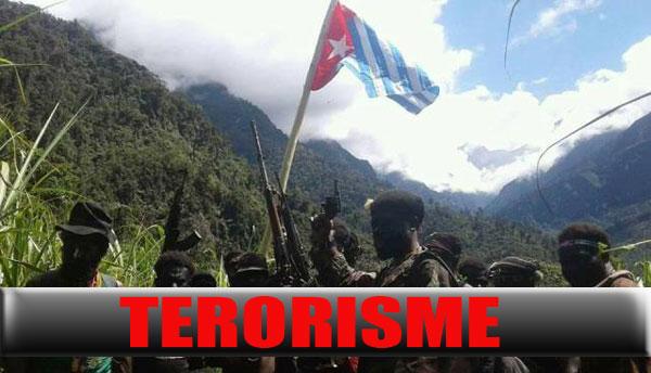 Kelompok Kriminal Bersenjata (KKB) resmi ditetapkan sebagai organisasi teroris oleh Pemerintah Indonesia tanggal 29 April 2021 lalu